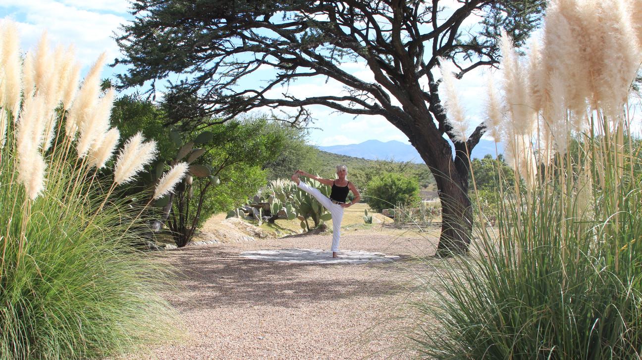 Fabienne's Yoga
